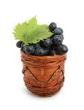 raisin photographie stock