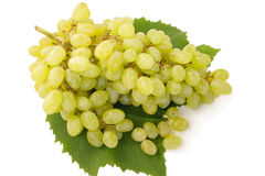 raisin image stock