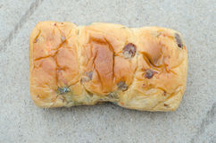 Raisin bread is going to moldy bread. On the ground Royalty Free Stock Images