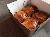 Raisin buns to go in cardboard box hot cross buns. Four hot cross buns without the cross but same recipe, glossy and studded with raisins, in a to-go cardboard Stock Photo