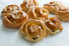 Raisin cream roll danish Stock Images