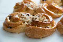 Raisin cream roll danish Stock Image