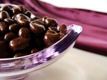 Raisin do chocolate Fotos de Stock