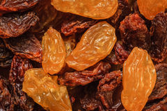 Raisin dried grape as background texture Stock Image