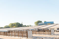 Raisin drying racks and cement drying courts near Augrabies Stock Image