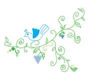 Raisin et oiseau de vigne d'abrégé sur vecteur de griffonnage Images libres de droits