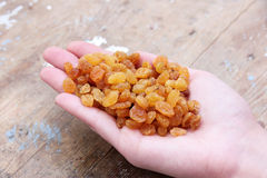 Raisin. Hand holding raisin on rustic wooden background Stock Photography