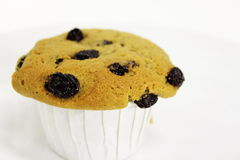 Raisin muffin Stock Photos