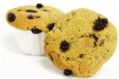 Raisin muffin Stock Images