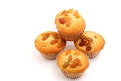Raisin muffin Royalty Free Stock Photo
