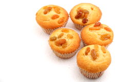 Raisin muffin Royalty Free Stock Images
