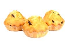 Raisin Muffins Stock Image