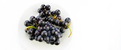 Raisin noir frais savoureux dans une cuvette images libres de droits