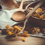 Raisin and peeled walnuts with wooden spoon and bowl retro styled Stock Image