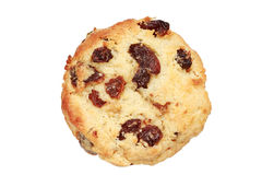 Raisin scone Royalty Free Stock Images