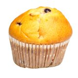 Raisin upcake in culinary paper. Isolated. On whitebackground royalty free stock photography