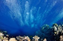 Raising underwater bubbles in the blue sea Royalty Free Stock Image