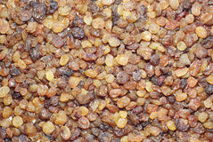Raisins. Background from dried fruits - brown raisins Stock Image