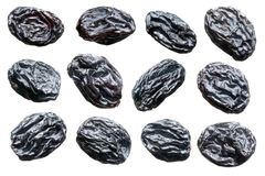 Raisins. Stock Images