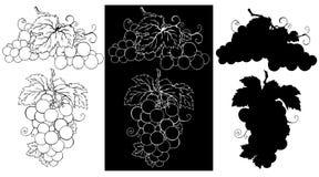 Raisins illustration de vecteur