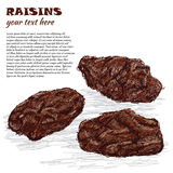 Raisins Stock Photos