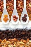 raisins fotografia stock libera da diritti