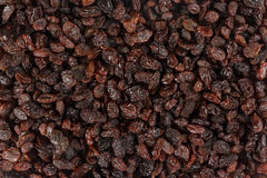 Raisins from above Stock Photography
