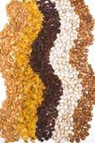 Raisins, almonds, pistachio and hazelnuts Royalty Free Stock Photography