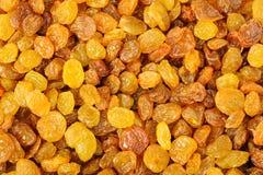 Raisins background Stock Image