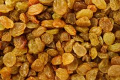 Raisins background. Close-up full frame dried fruit Royalty Free Stock Image