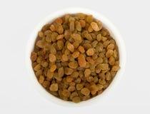 Raisins or black currant Stock Image