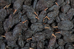 Raisins black many Stock Images