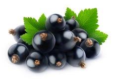 Raisins blancs d'isolement Image stock