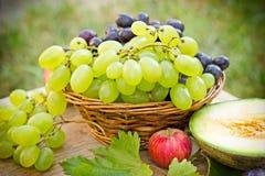 Raisins - blancs et raisins rouges (fruits saisonniers) Images libres de droits