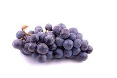 Raisins bleus Image libre de droits