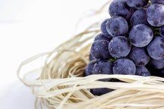 Raisins bleus Photo libre de droits