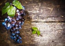 Raisins bleus sur le panneau rustique photographie stock libre de droits