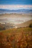 Raisins champ et montagne Images stock