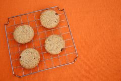 Raisins chip cookies. Round chip cookies with raisins and integral wheat flour Royalty Free Stock Photos