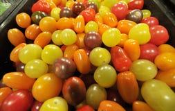 Raisins colorés multi Images libres de droits