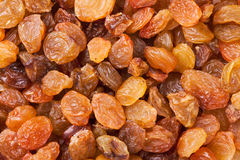 Raisins closeup Royalty Free Stock Images