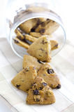 Raisins cookies Royalty Free Stock Images