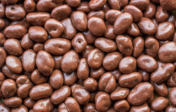 Raisins covered in chocolate. royalty free stock photos