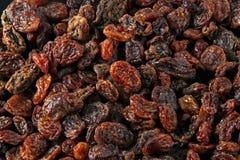 Raisins or currants Stock Photos