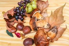 Raisins d'Autumna, l champignons et châtaignes Images libres de droits