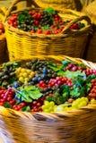 Raisins dans la cave au monast?re photo libre de droits