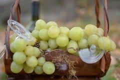Raisins dans le panier Image libre de droits
