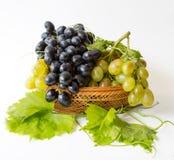 Raisins doux Images stock