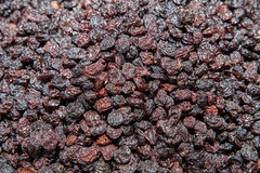 Raisins. Dried grapes, vertical background Royalty Free Stock Photos