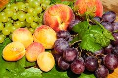 Raisins et fruits mûrs Photographie stock libre de droits